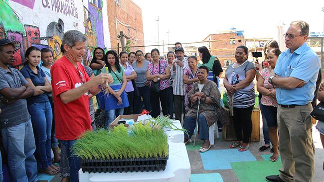 Projeto do Instituto Stop Hunger ensina comunidade a plantar alimentos