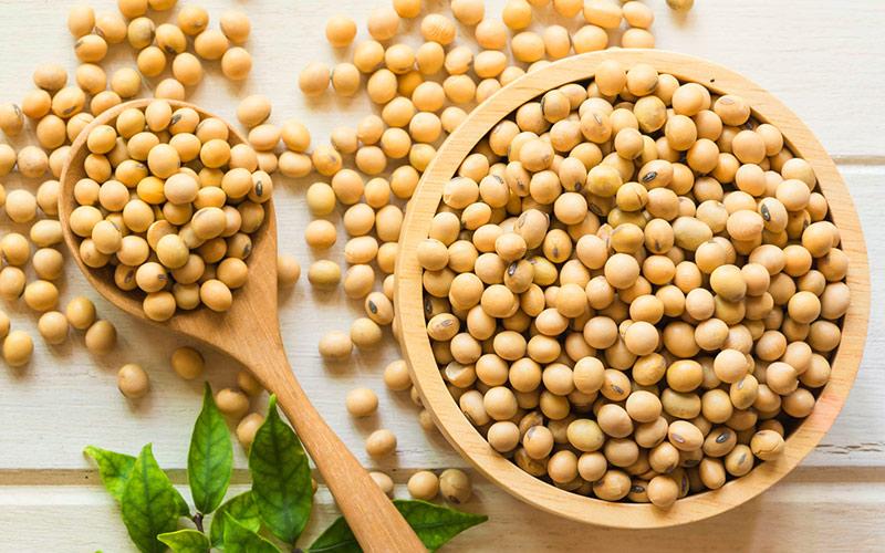 Como fazer salada com soja em grãos