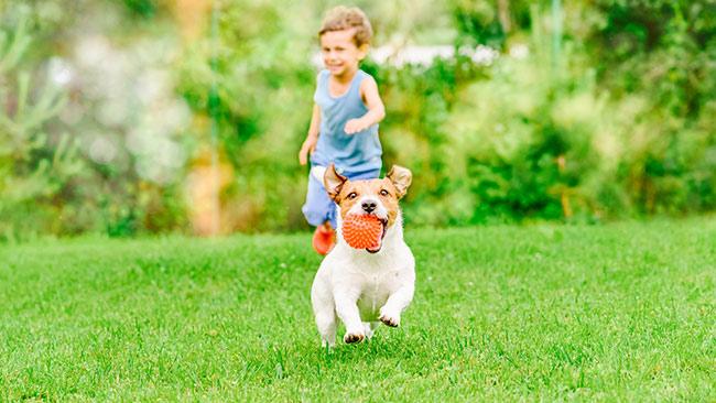 Combata a obesidade infantil com atividade física