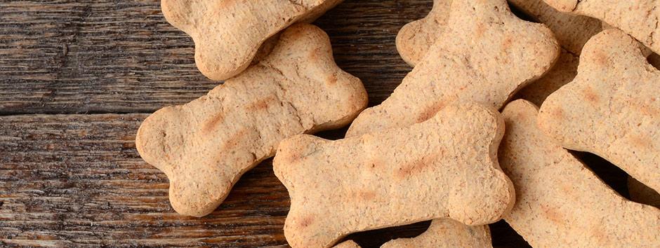 Receita de biscoito para cachorro e gato