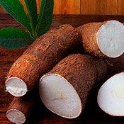 Benefícios da mandioca para a saúde