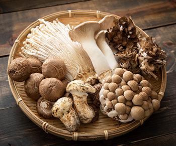 Conheça os benefícios do cogumelo na sua dieta