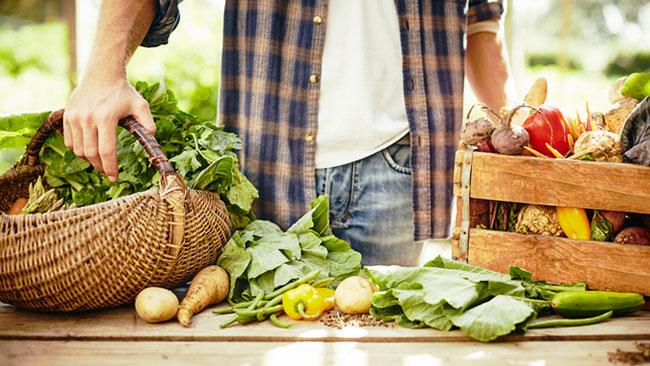 Sua alimentação pode ser mais sustentável. Aprenda aqui!