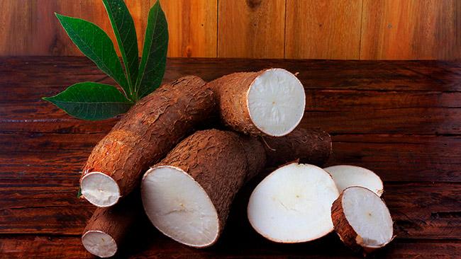 Conheça os benefícios da mandioca para sua saúde