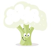 Conheça os benefícios do couve-flor para sua saúde